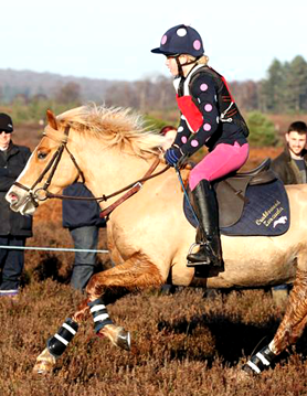 Christmas present xc colours in New Forest Point to Point on Boxing Day!