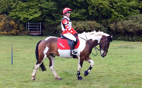 Matching red rugby shirt, hat cover and saddle cloth with white diamond designs and text
