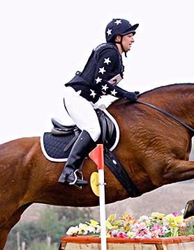 Black colours with white stars on bay mare at Milton Keynes 3DE