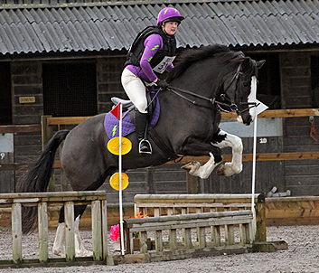 Purple XC Colours Arena Eventing