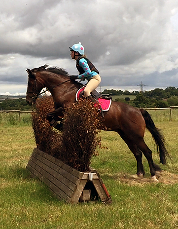 XC jumping in capri blue baselaeyr and hat cover