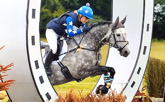 Royal and silver colours jumping through horse shoe