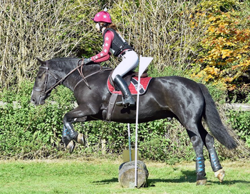 Hunter trials in Burgundy XC Colours