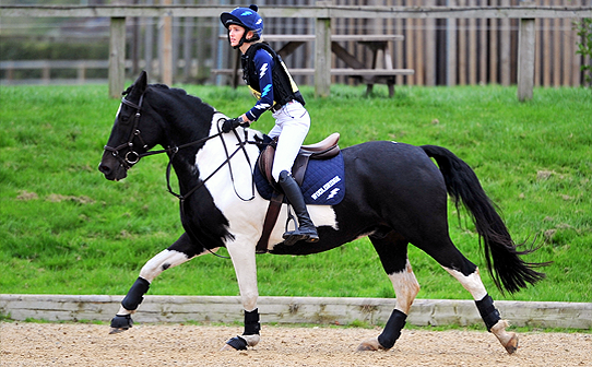 Side view of Navy XC Colours in Surrey