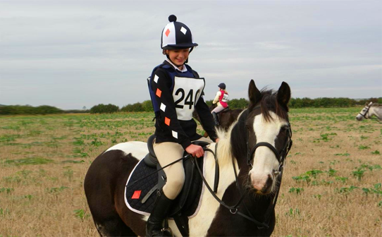 Black, white and orange saddle cloth, rugby and hat cover on coloured horse