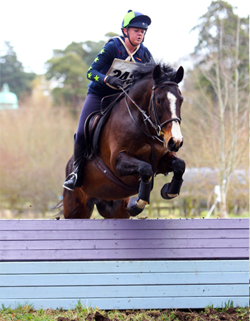 Hunter trial jumping in lime and navy colours