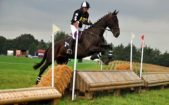 Rosie and Taz in black and white custom xc top, hat cover and printed saddlecloth